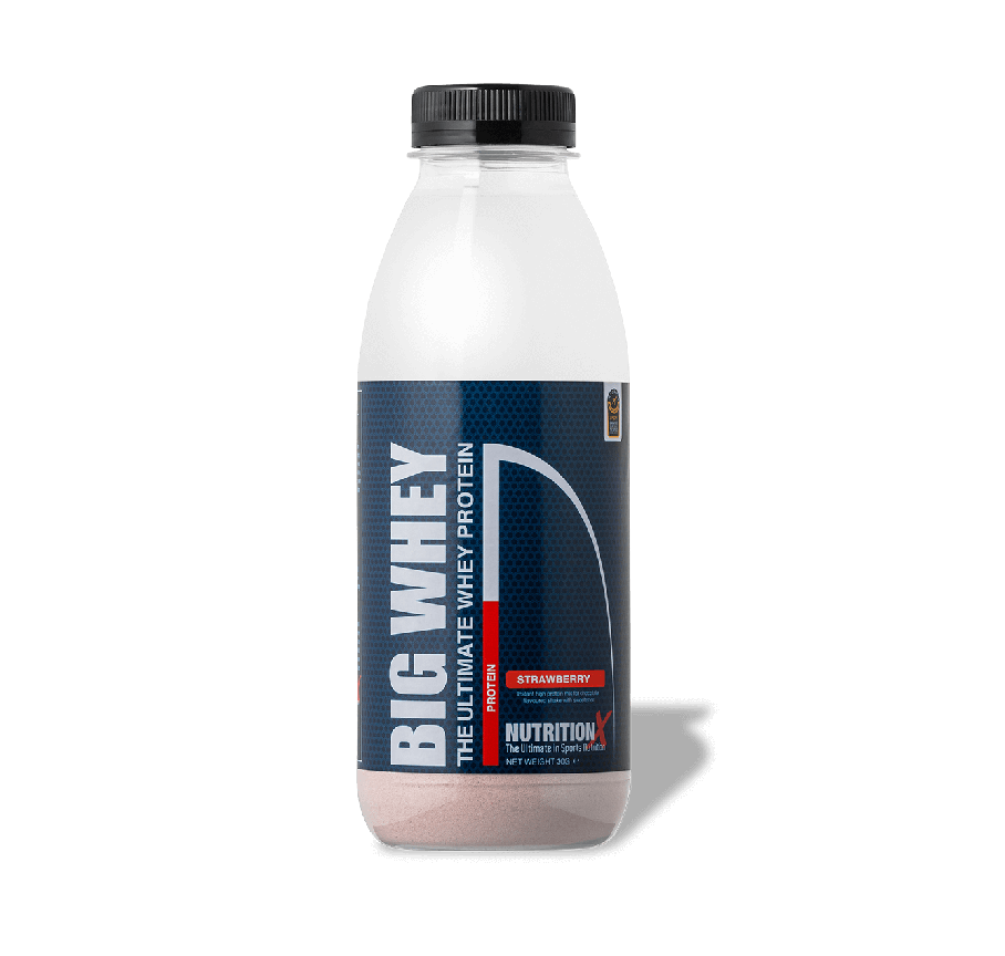 Big Whey Shake and Take (15 x 30g)