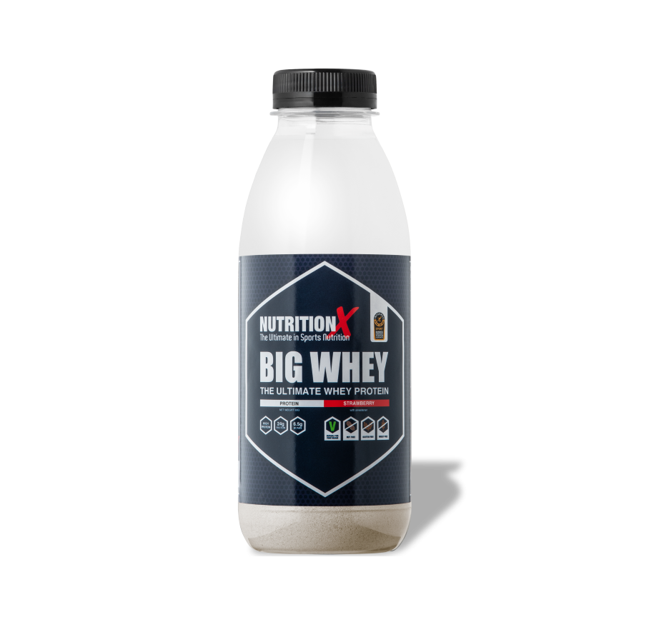 Big Whey Protein Shake and Take (15 x 30g)